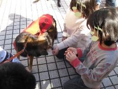 2010.12aoyama-b00.jpg