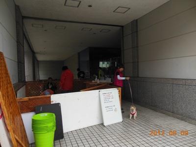 DSCN2356.jpg
